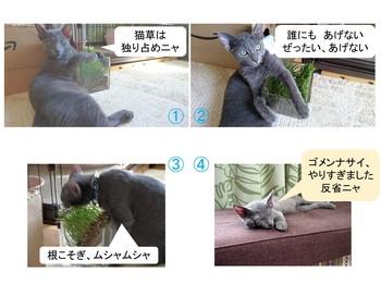 Nyanko_Manga4.jpg